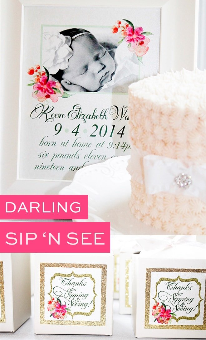 Darling Sip 'n See celebration with lots of pretty pictures!