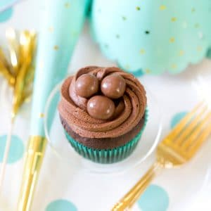 Chocolate Cupcake with a Chocolate Topper