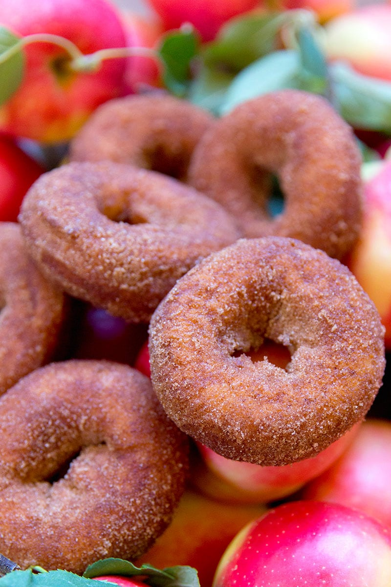 AMAZING Apple Cider Donuts!