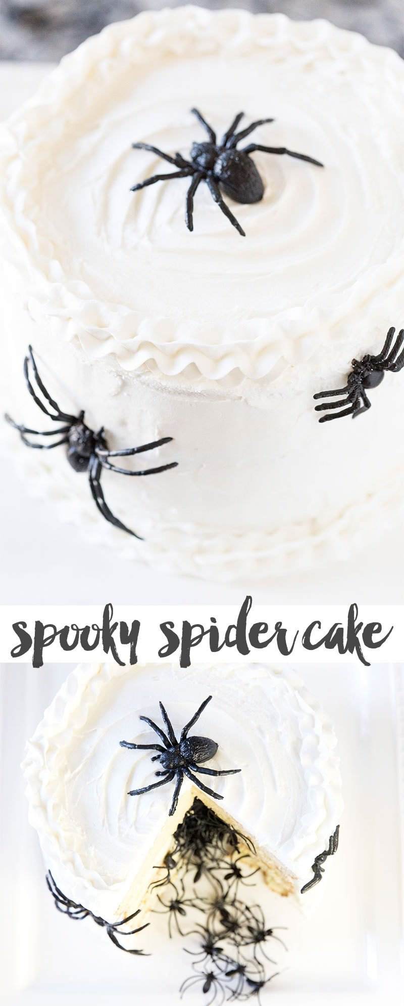 Spook your family with this Halloween Surprise Spider Cake!