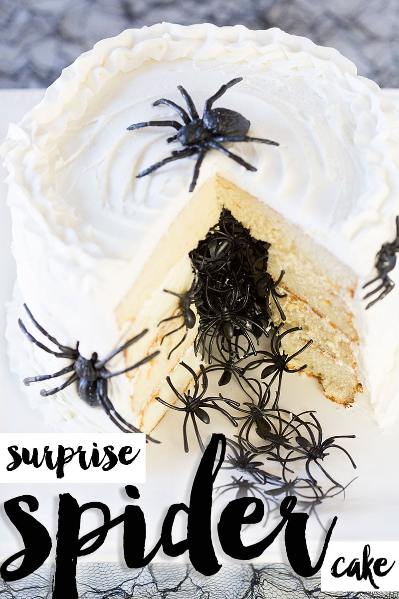 Celebrate Halloween with this spooky spider cake. Just wait until you see the expressions on their face when you cut into this spider cake! Pizzazzerie.com