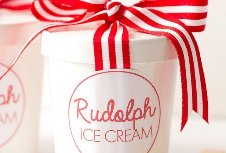 Easy, No-Churn Rudolph Ice Cream for Christmas!