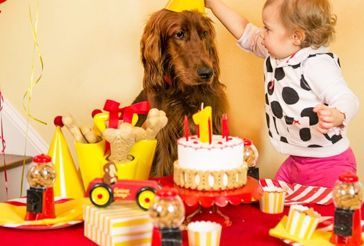 A Puppy Pawty: Curious George Turns 1!