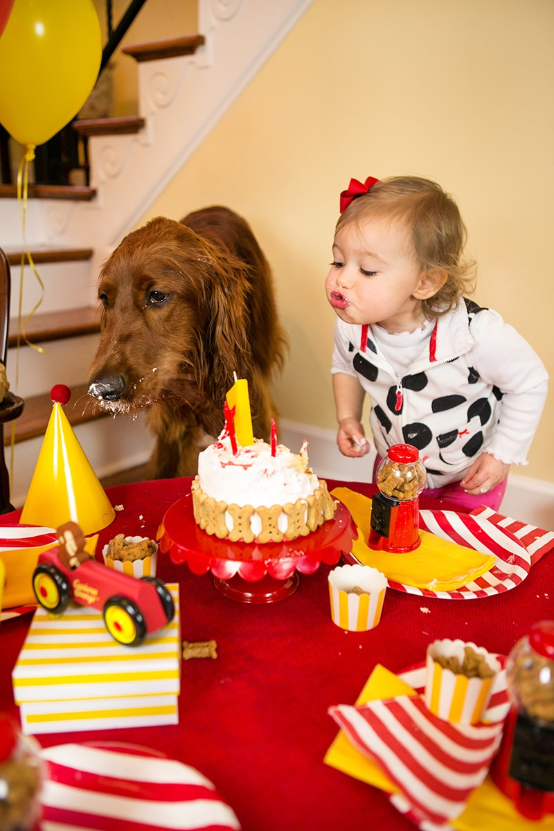 "Curious George Dog Birthday Party ""Pawty"" Ideas! Pizzazzerie.com"