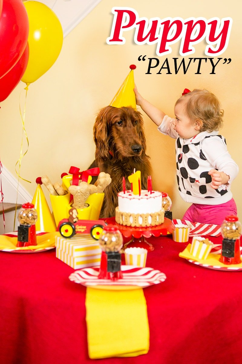 A Puppy Pawty Curious George Turns 1 Pizzazzerie
