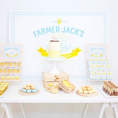 a farmer themed birthday party for little boy