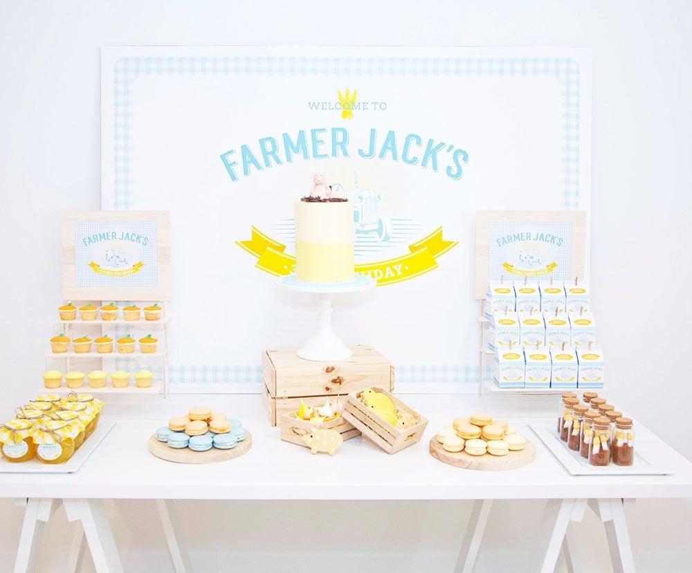 Farmer Jack's 3rd Birthday Party!