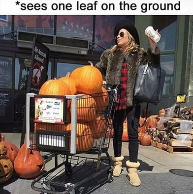 how i feel about fall