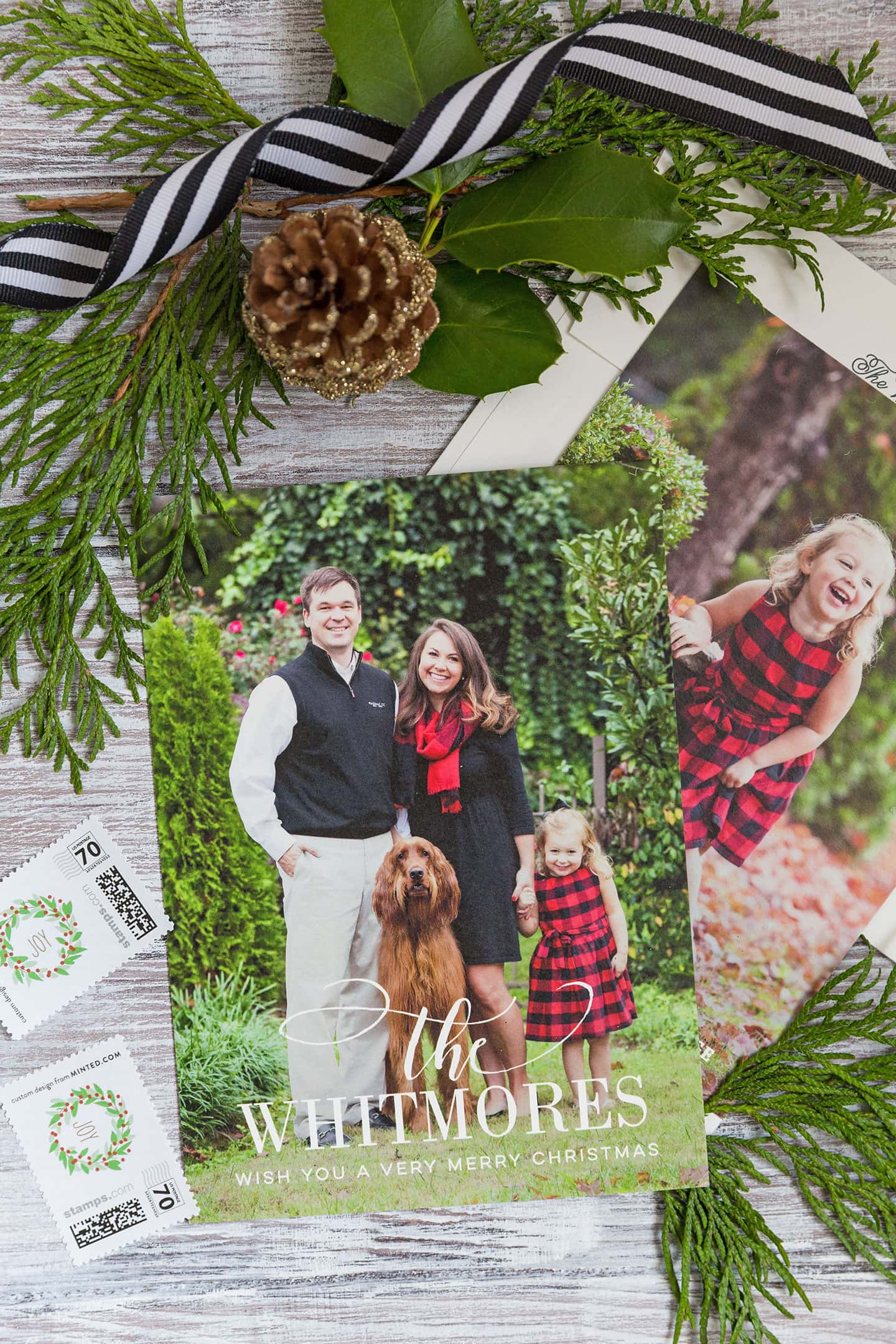 Minted Holiday Christmas Cards