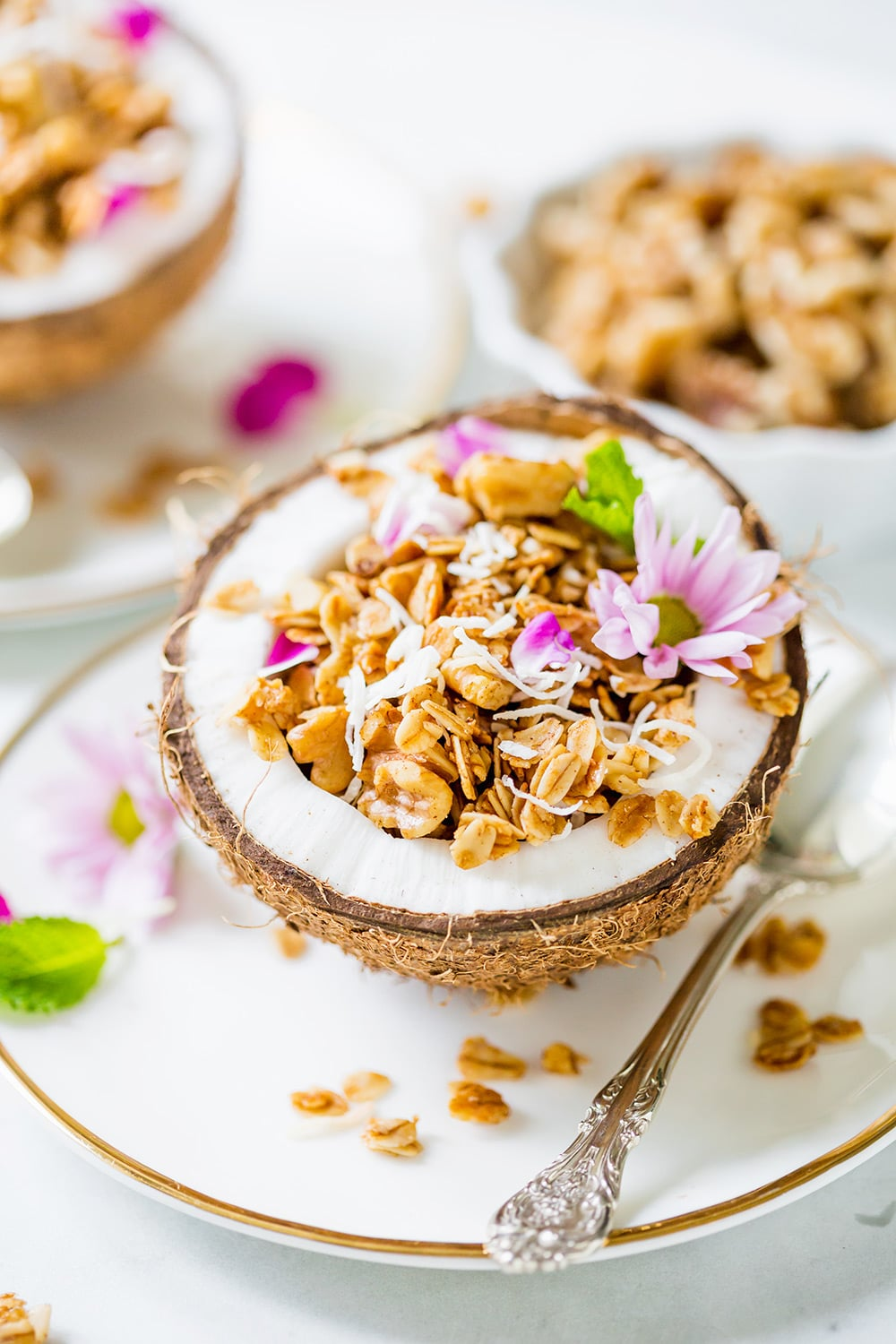 Homemade Coconut Walnut Granola