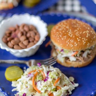 bbq plate with coleslaw