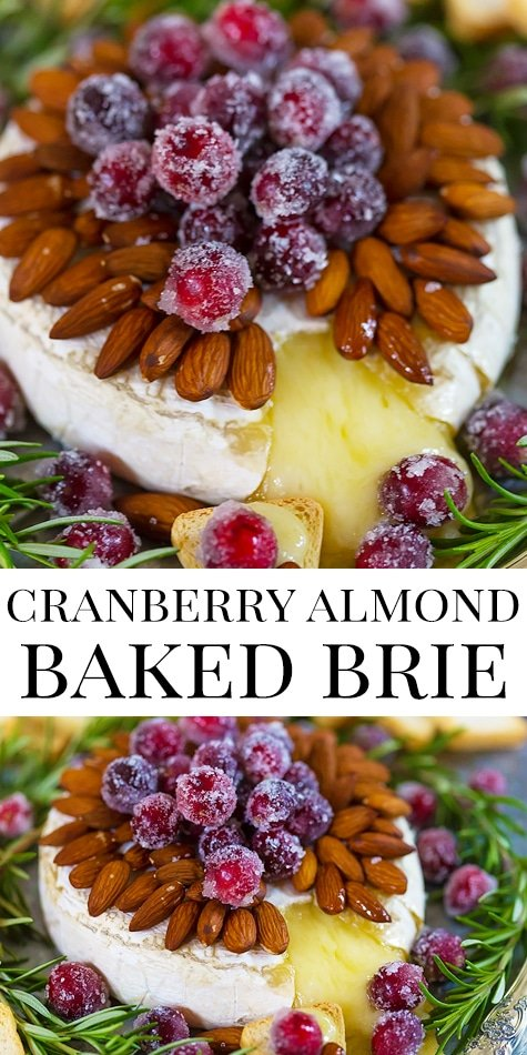 The absolute best holiday baked brie appetizer!