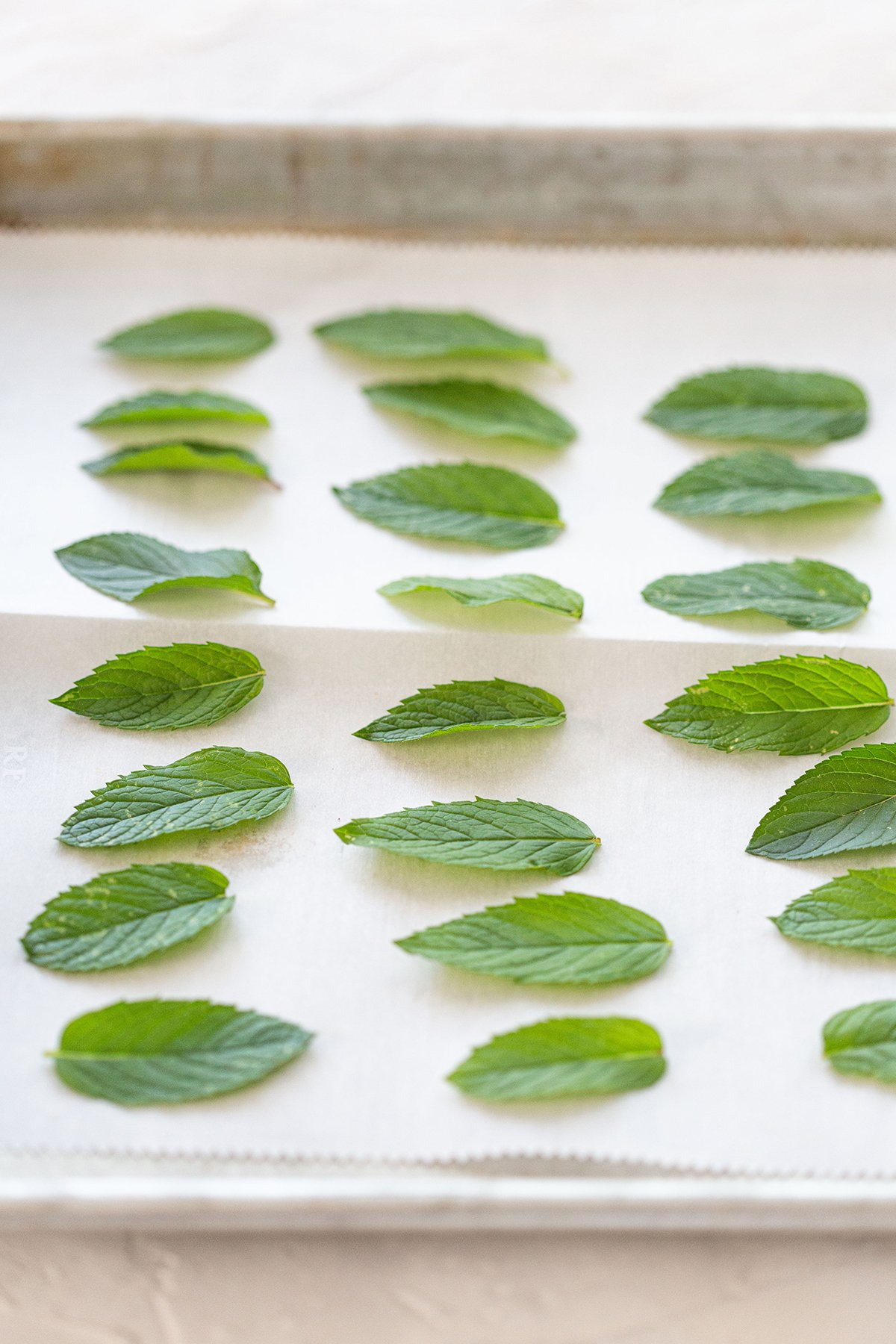 Tray of Mint Leaves