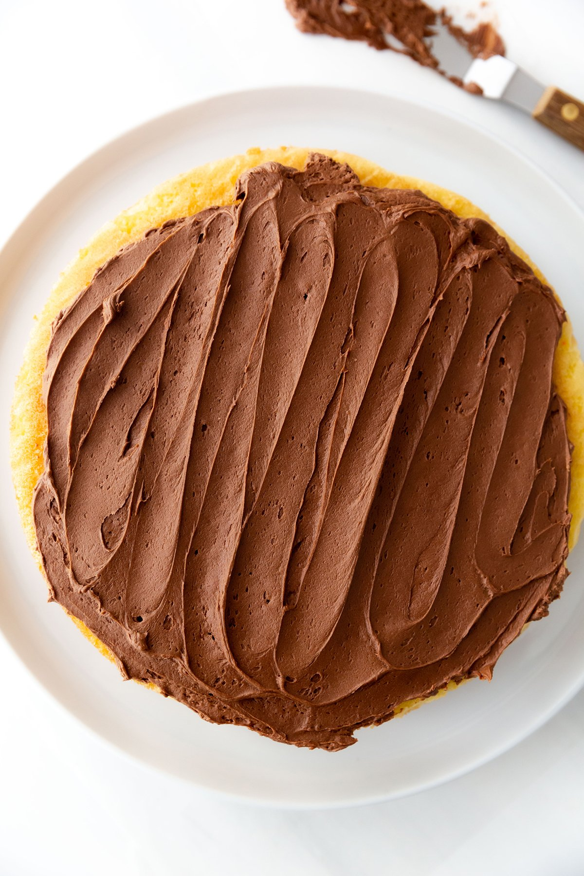 Chocolate Frosting made with Store Bought Canned Frosting